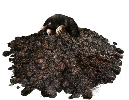 Digital illustration of mole in his molehill