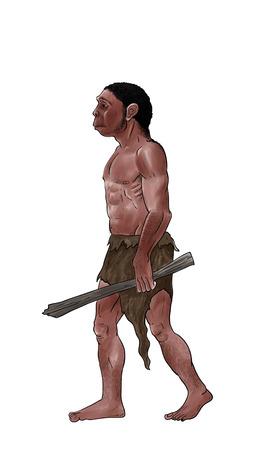 erectus: Ilustraci�n digital de Homo erectus, entintadas