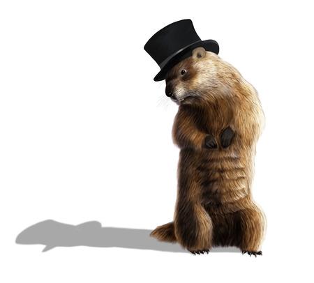 Digital illustration of a groundhog looking at his shadow 写真素材
