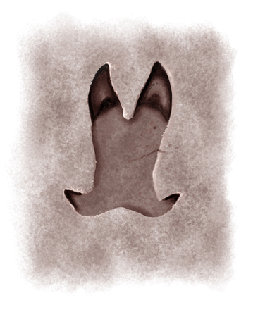 footmark: Digital illustration of a hog footprint
