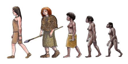 Human evolution digital  illustration, homo erectus, australopithecus,sapiens