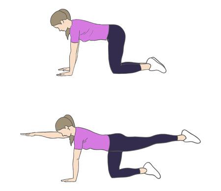 Digitale illustratie van een fitness vrouw doen vogel hond oefening
