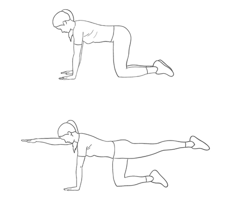 Digital Illustration Of A Fitness Woman Doing Bird Dog Exercise