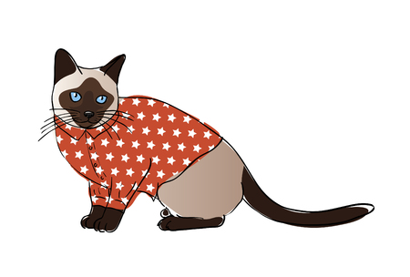 dressed: Digital sketch of a dressed kitty Stock Photo