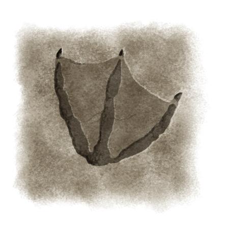 vogelspuren: Digitale Illustration einer Ente Fußabdruck