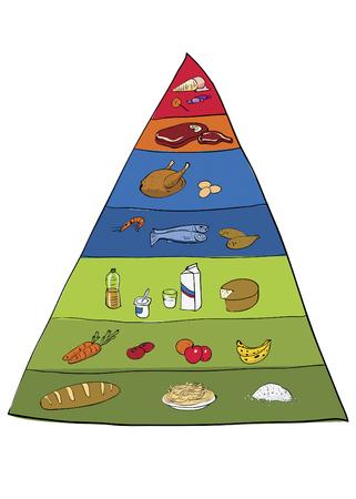 Food pyramid digital illustration