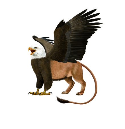 gryphon: Digital illustration of a Gryphon