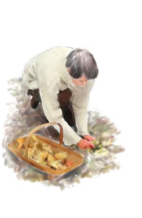 Digital illustration of a person gathering mushrooms 版權商用圖片
