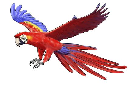 Digital watercolor of a macaw