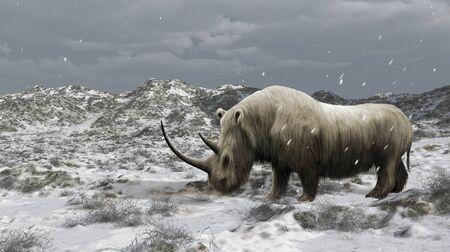 Digitale illustratie van een uitgestorven coelodonta