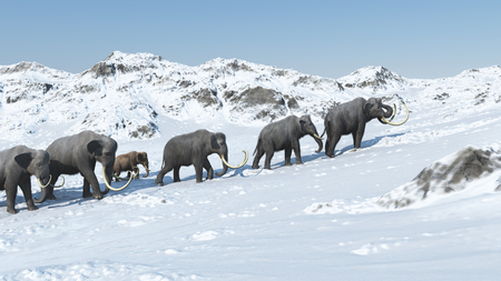Mammoth group 3d render 版權商用圖片