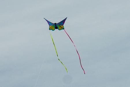 kite flying: Kite flying in autumn