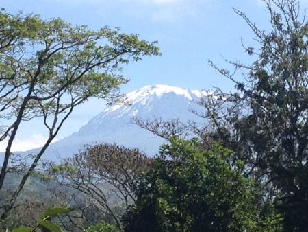 kilimanjaro: Kilimanjaro mountain in Tanzania