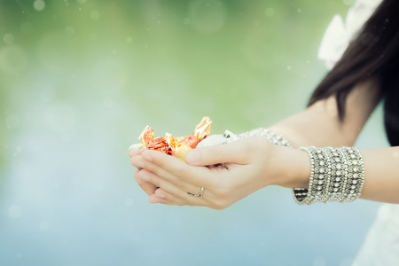 Girl s Hands Holding Candy  Stock Photo - 21737336