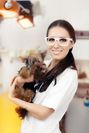 health professional: Young Veterinarian Female Doctor with Cute Dog