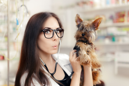 canine: Surprised Veterinarian Female Doctor with Cute Dog