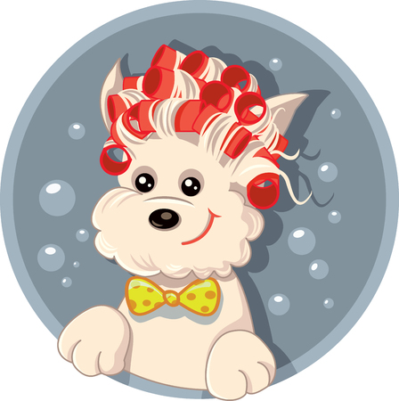 pampered: Funny Dog with Hair Rollers Pet Salon Vector Cartoon