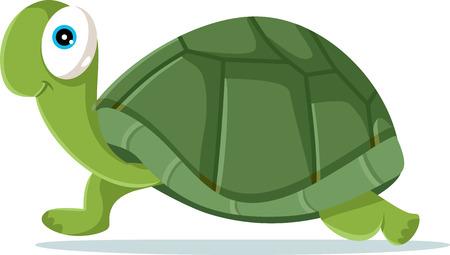 Cute turtle vector cartoon illustration design.