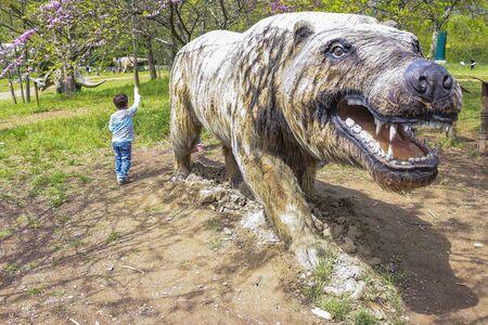 carnivorous: large carnivorous animal