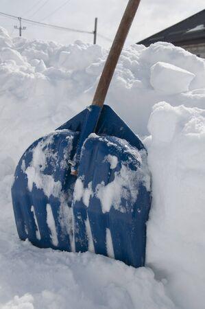 shove: shove snow winter