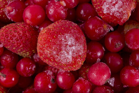 long term: berries in a deep freeze for long term storage Stock Photo