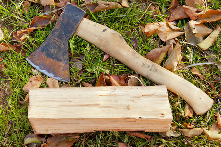 log basket: ax and a log lying on the grass Stock Photo