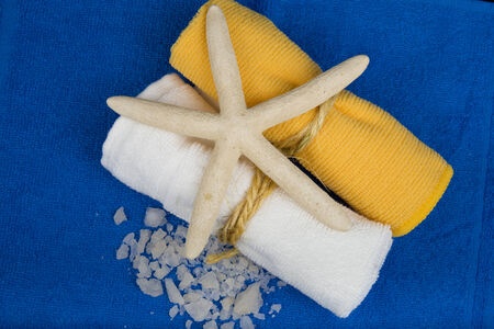 terry: spa komozitsiya marine style of two towels, sea salt and morsoky Star fonesinego terry towel