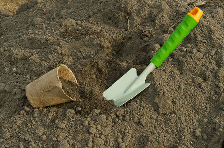 peat pot: green  shovel and peat pot for seedlings in the ground Stock Photo