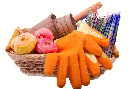 gardening gloves: packets of seeds, flower bulbs gladiolus, orange gardening gloves peat pots for seedlings in a basket on a white background Stock Photo
