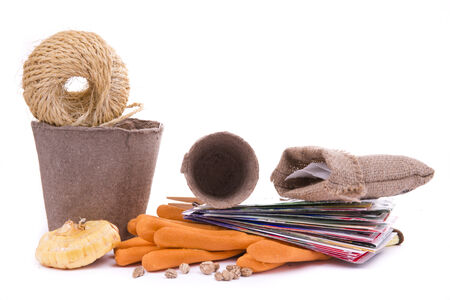 seed pots: seed packs, peat pots, gloves, gladioli bulbs and garden rake on white background Stock Photo