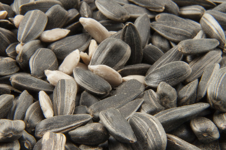 shelled: Shelled sunflower seeds and  with peel texture