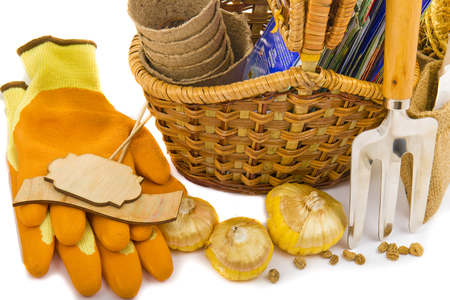 wicker work: wicker basket with seeds, gloves, garden rakes, peat pots, gladioli bulbs and a sign with the word seeds on a white background Stock Photo