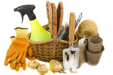 wicker work: wicker basket with seeds, gloves, garden rakes, peat pots, gladioli bulbs and sprayer on a white background Stock Photo