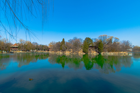 Peking University Weiming Lake in spring