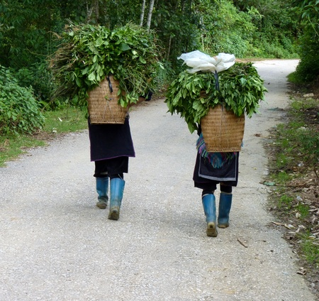 Hmong women in Sapa, Vietnam photo