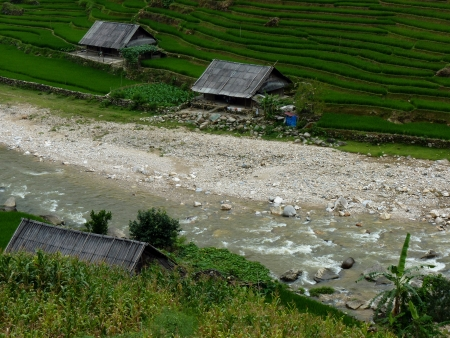 Peaceful Rice Farm Near A River In Mountains Of Sapa In North Of Vietnam photo