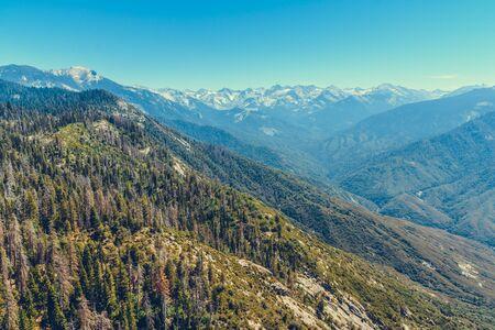 Park Narodowy Sekwoi w Kalifornii, USA Zdjęcie Seryjne