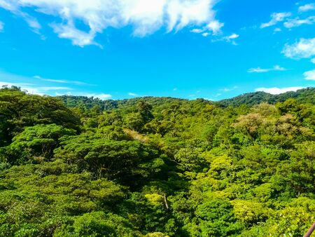 Monteverde national park, Puntarenas, Costa Rica Reklamní fotografie