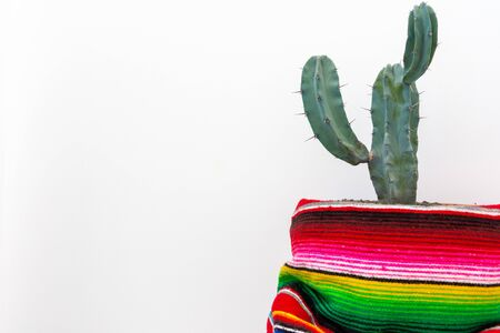 Cactus and colorful mexican poncho isolated on white background