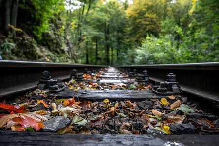 Train tracks in nature in autumn - close-up Stockfoto