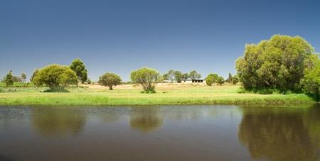 cisnes: paisaje hermoso en Swan Valley