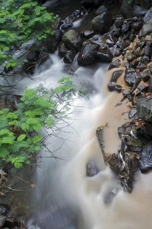 flowing river: r�o que fluye