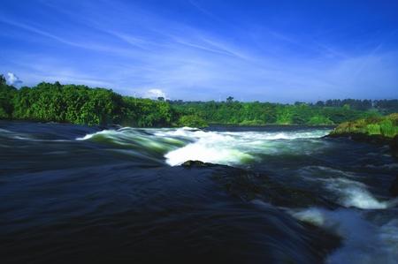 entebbe: nile river in uganda