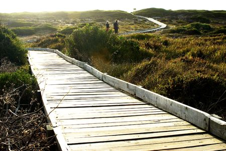 Path running through the nature reserve in South Africa by the ocean. photo