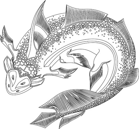prehistoric fish: Prehistoric fish
