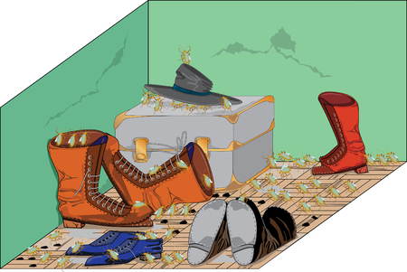 looting: old shoes 3 Illustration