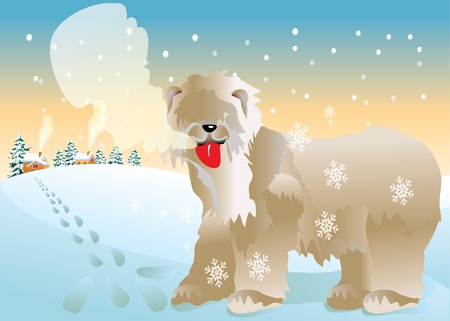 wolfhound Stock Vector - 10381099