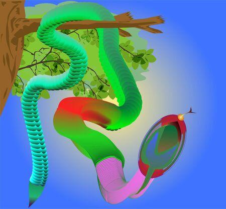 venomous snake: motley serpiente venenosa