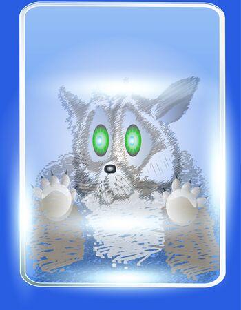 cat in a glass