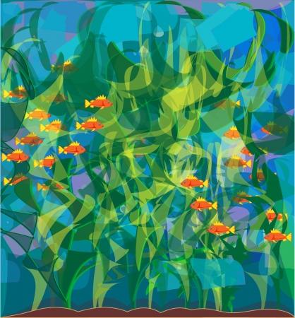 algae Laminaria  Illustration